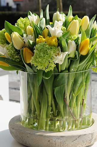 fleurop tulpen hier erfahren sie alles ber blumen. Black Bedroom Furniture Sets. Home Design Ideas