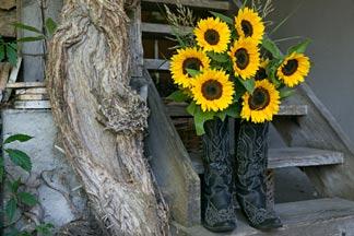 Cowboystiefel mit Sonnenblumen