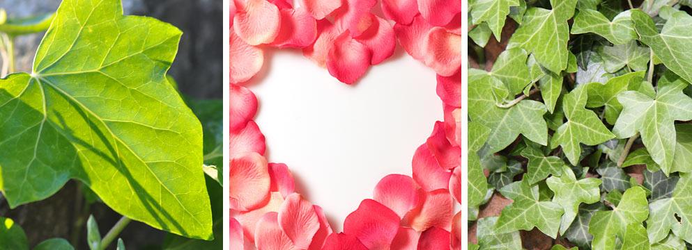 Herzen aus Blätter