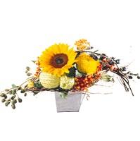 Grosser Sonnenblumenstrauss