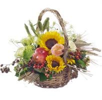 Sonnenblumenkorb