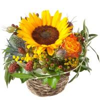 Korb mit Sonnenblume