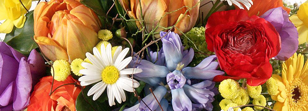 Symbolik der Blumenfarben - Hier erfahren Sie alles über Blumen