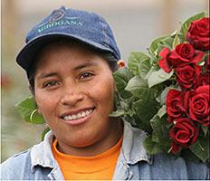 max Havelaar Blumenarbeiterin