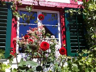 Blumen vor Haus