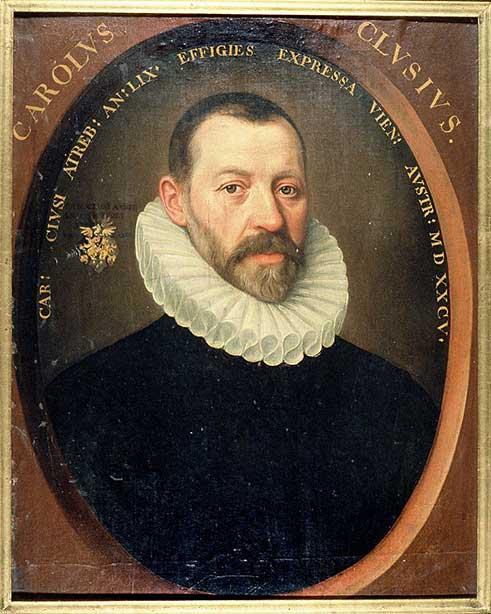 Botanikers Carolus Clusius