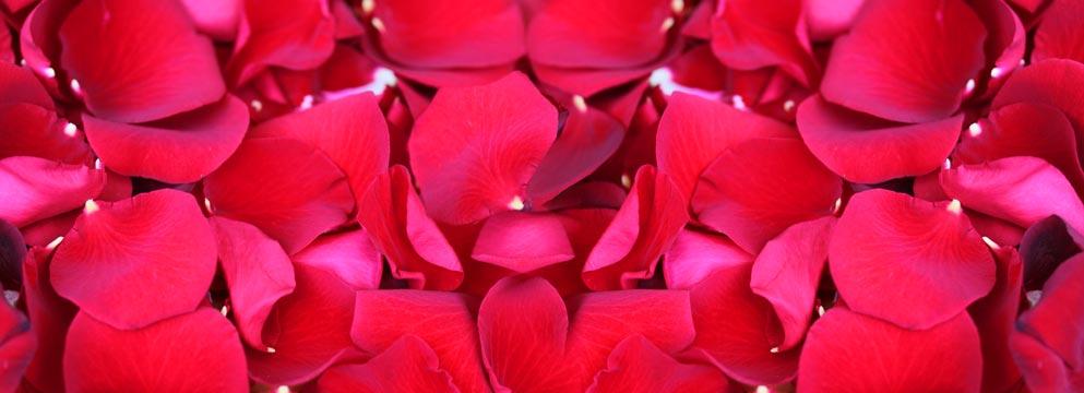 Valentinstag: Verliebt in die Liebe