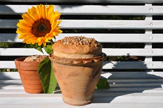 Brot im Blumentopf