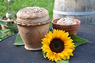 Brot im Blumentop mit Sonnenblume