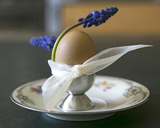 Frühstücksei mit Lavendel