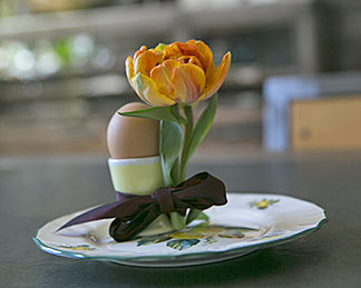 Frühstücksei mit Tulpe