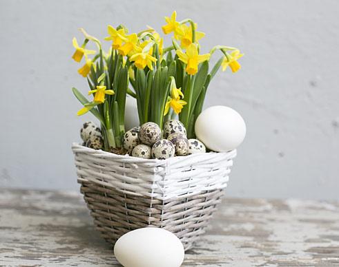 Osterglocken im Korb und Eier