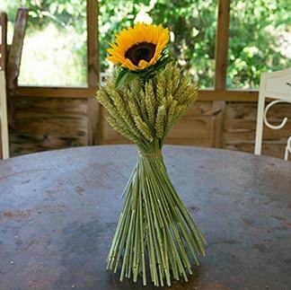 Ähren mit Sonnenblume