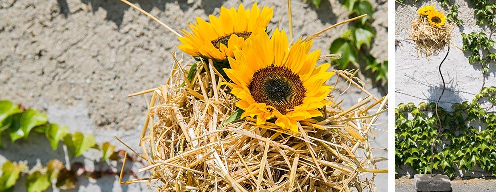 Sonnenblumen Ständer