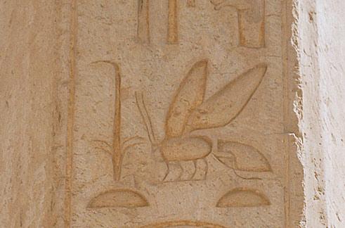 Bienen Inschriften