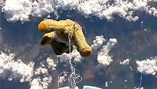 Fliegendes Teddybär