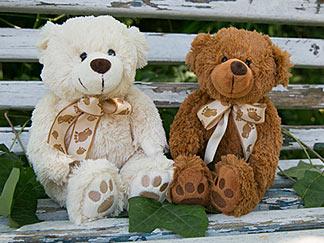 Teddybären-Duo auf Parkbank