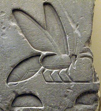 Biene im alten Ägypten