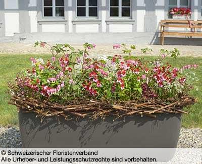 © Schweizerischer Floristenverband