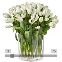 MyBouquet weisse Tulpen