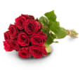 Media 1 - 10 red roses