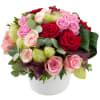 Media 1 - Romantic Roses