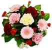 Media 1 - Flower Power