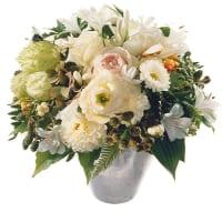 Perla fiorita Bianca