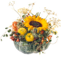Sunny Arrangement in a Pumpkin