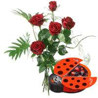 For my Sweetheart, with chocolate ladybird