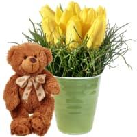 Hit du printemps (piqué) avec ours en peluche (brun)