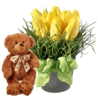 Easter Special (arrangement) with teddy bear (brown)