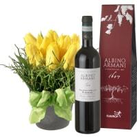 Frühlings-Hit (gesteckt) mit Ripasso Albino Armani DOC (75cl)