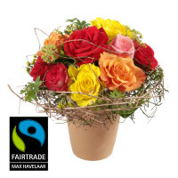 "Say ""thank you"" with Fairtrade Max Havelaar-Roses - small Blooms"