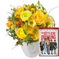 Little Sunshine avec DVD «L'ordre divin»