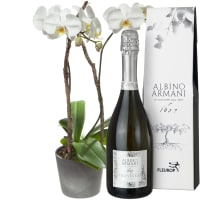 Precious and Unforgettable with Prosecco Albino Armani DOC (75cl)