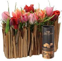 Elégant jardinet de tulipes avec amandes au cacao Gottlieber