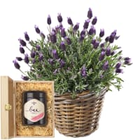 A Basket of Lavender with Swiss blossom honey