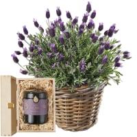 Ein Korb voll Lavendel mit Schweizer Blütenhonig