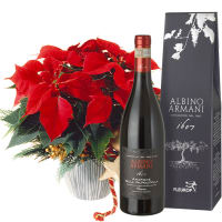 Poinsettia Decorated, with Amarone Albino Armani  DOCG (75cl)