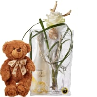 Elegance with WHITE Secco Cool Bag (75cl), 2 Champagne Glasses and teddy bear (brown)