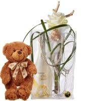 Élégance mit WHITE Secco Cool Bag (75cl), 2 Gläser und Teddybär (braun)