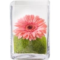 Pour mettre de bonne humeur vase inclus