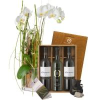 Orchidée (plante) d'une grande élégance associée au coffret cadeau Gudarrà «Southern Italian Essence»