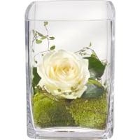 Précieuse salutation vase inclus