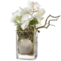 Design orchidea, vaso incluso