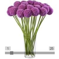 MyBouquet Allium <br> (Preis & Anzahl wählbar)