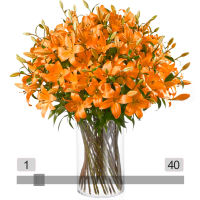 MyBouquet orange Lilien