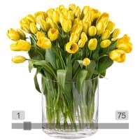 MyBouquet tulipani gialli
