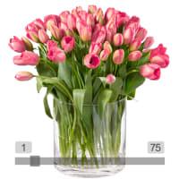 MyBouquet tulipani rosa